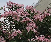 08_07_5